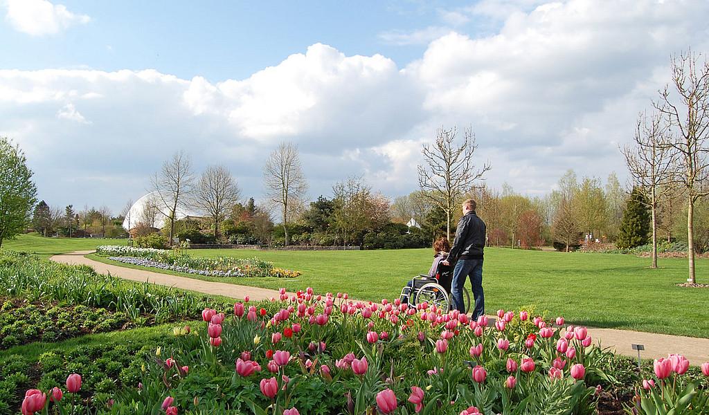 Park der Gärten Bad Zwischenahn in Ostfriesland