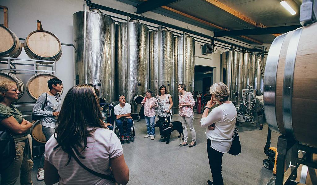 """Das nach """"Reisen für Alle"""" zertifizierte Wein- und Sekthaus Schreieck lädt zur Weinverkostung ein."""