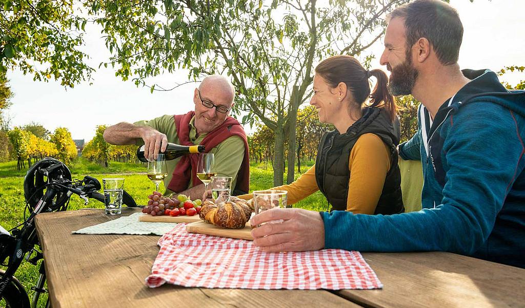 Südliche-Weinstraße-Picknick in den Weinbergen