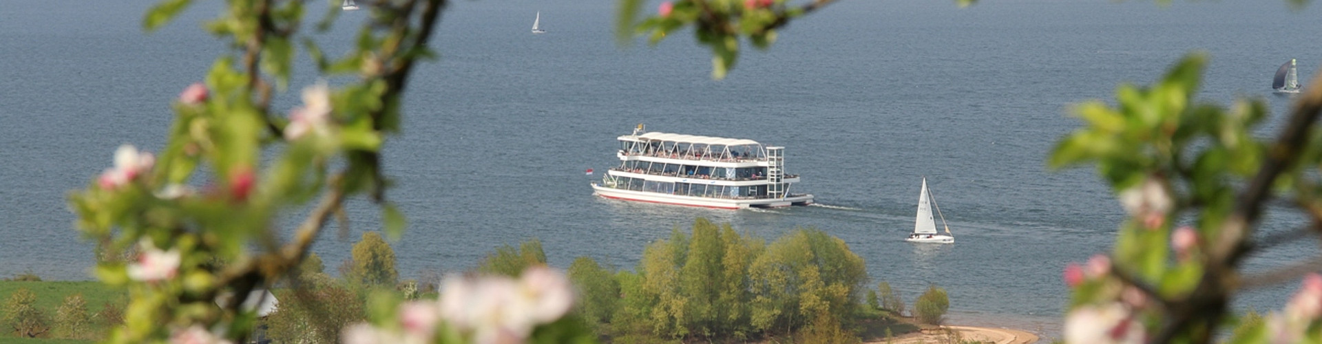MS Brombachsee mit Kirschblüte