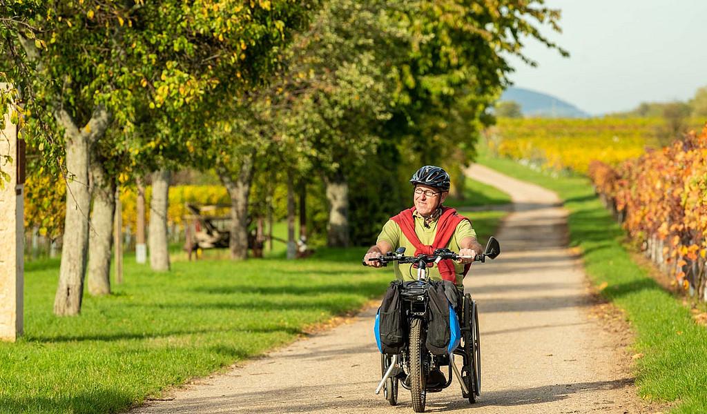 Der Biblische Weinpfad führt über ebene Wege, die auch mit dem Handbike befahren werden können.