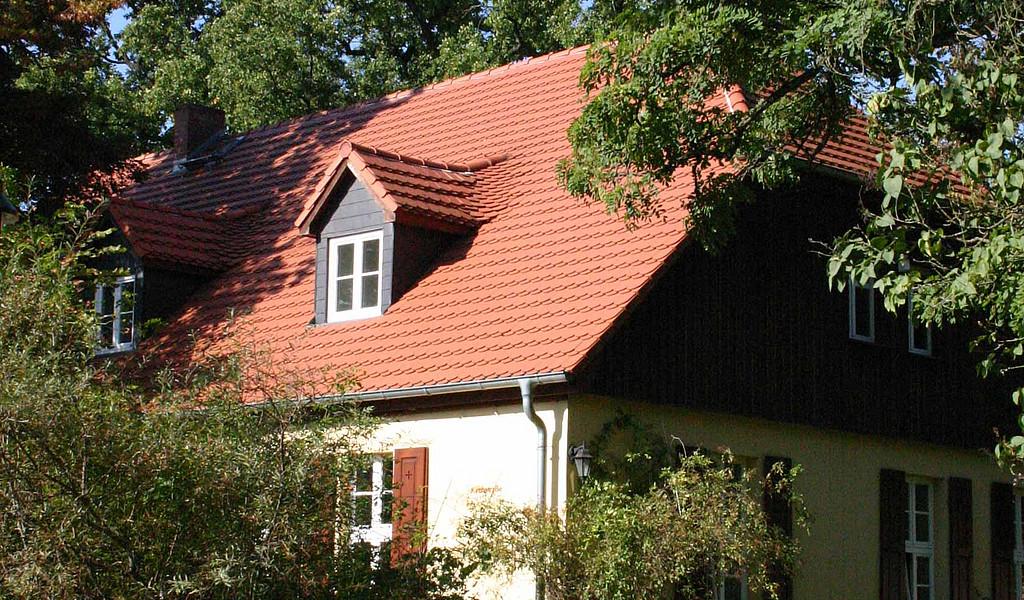 Das Naturparkhaus Stechlin in Menz macht mit den Lebensräumen Wald, Wasser und Moor vertraut.