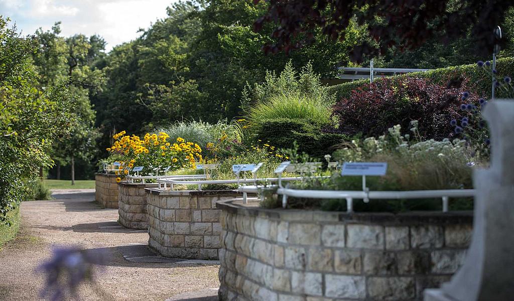 Im Duft- und Tastgarten im egapark wurden Hochbeete mit Handläufen angelegt.